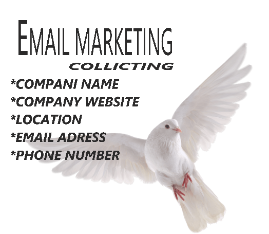 I will be email marketing and web research