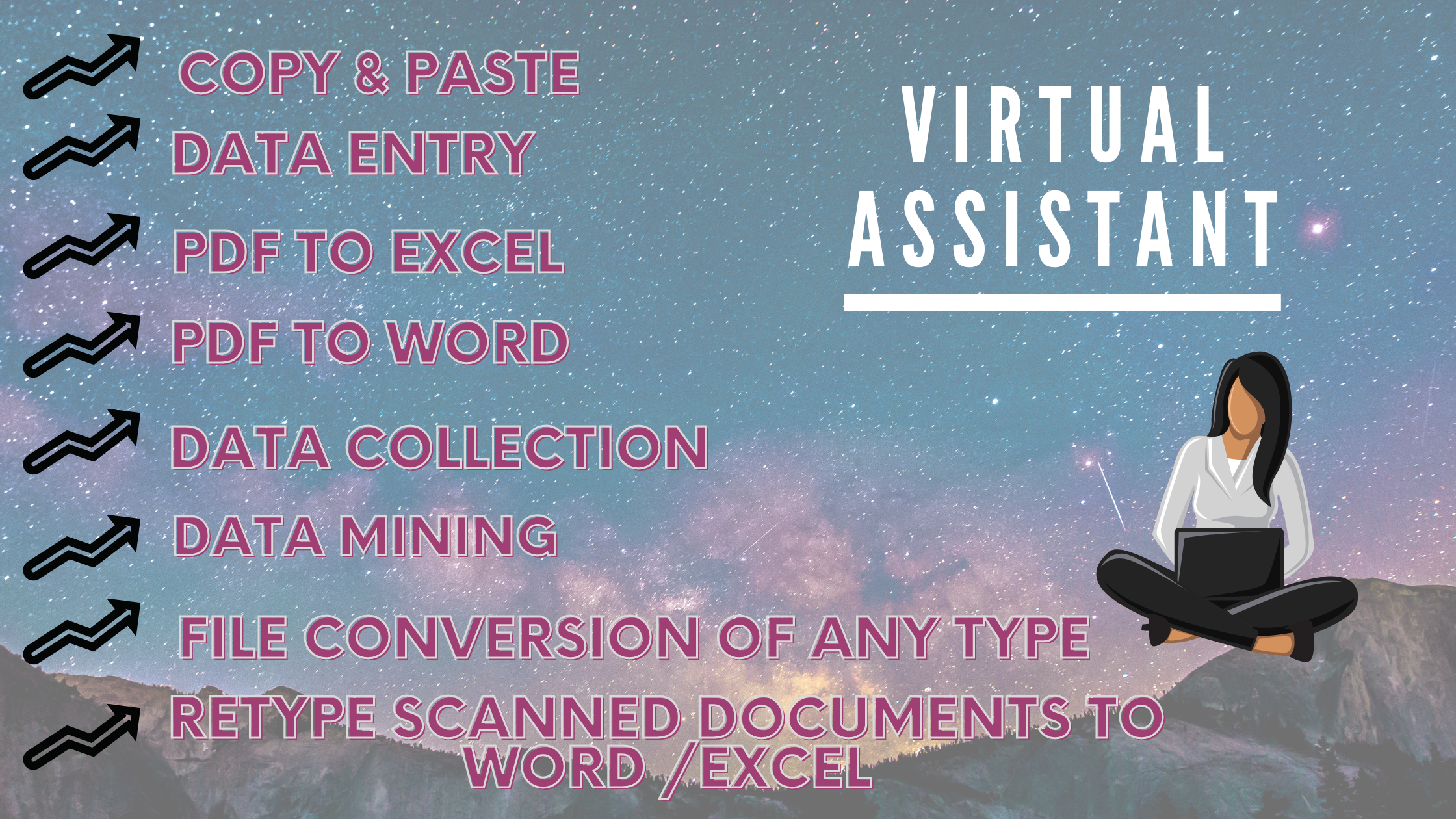 I will be your Professional Virtual Assistant as your demand