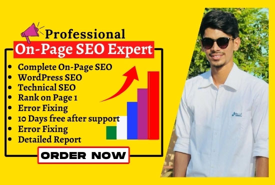 Complete wordpress on page seo and technical seo to rank website on the first page for 5 pages