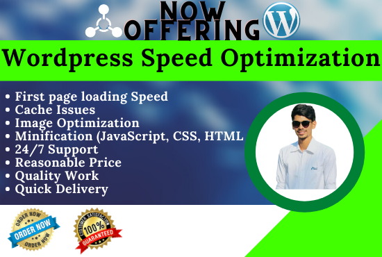 increase WordPress speed optimization and fix issues