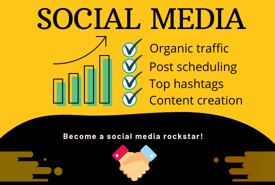 I will design professional social media posts or maintain your page