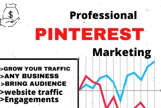 I will promote your product or website to my pinterest audience