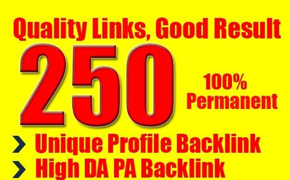 create for you 250 unique profile high pr seo backlinks