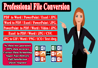 I will provide professional files conversion services
