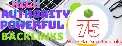 I will do unique domain SEO backlinks 75 on da100 tf100 sites