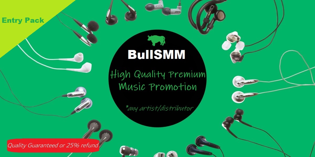 Premium Quality Music Promotion Artist Playlist Song Monthly High Quality USA