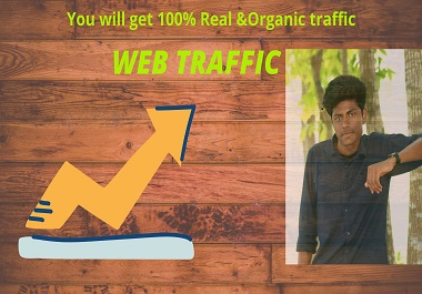 I will provide you real and organic web traffic