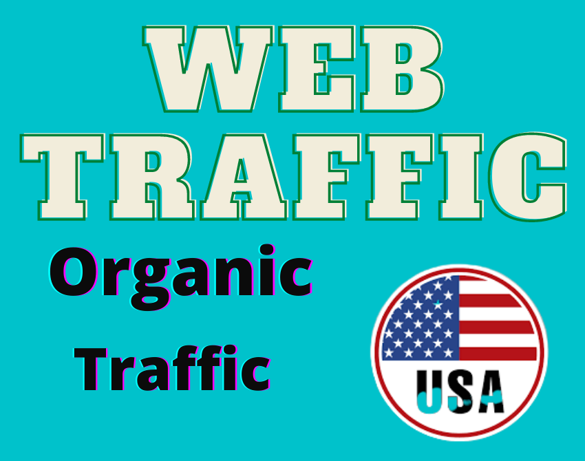 I Will Provide you 1K Usa Organic Website Traffic