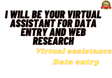 I will be your virtual assistant for data entry and web scraping