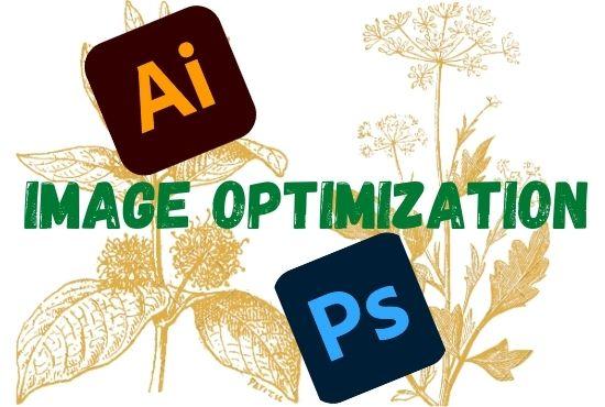 I will do image optimization & editing