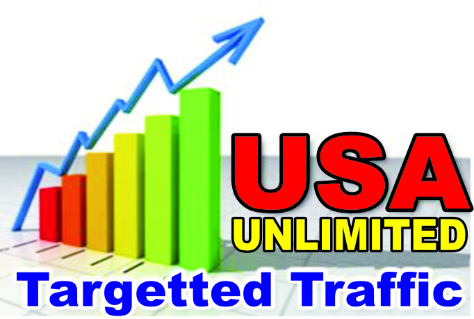 I Will Send Organic 500,000 USA Targeted Visitors to your Website