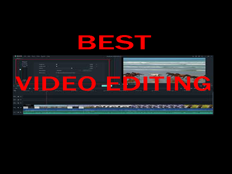 I will be your professional video editor