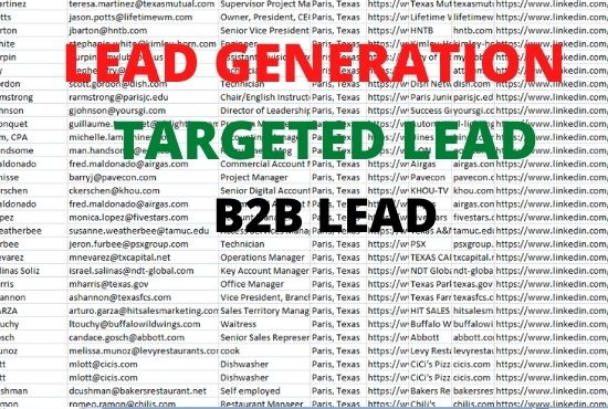 I will provide targeted 10 b2b lead generation services
