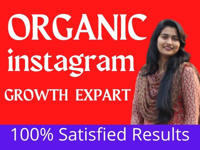 supar fast organic instagram growth provide