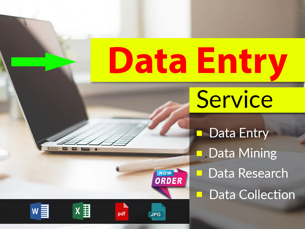 I will provide ms excel data entry service