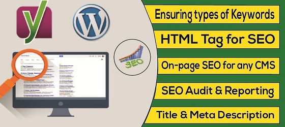 I will do do On Page Onsite SEO for google Top ranking