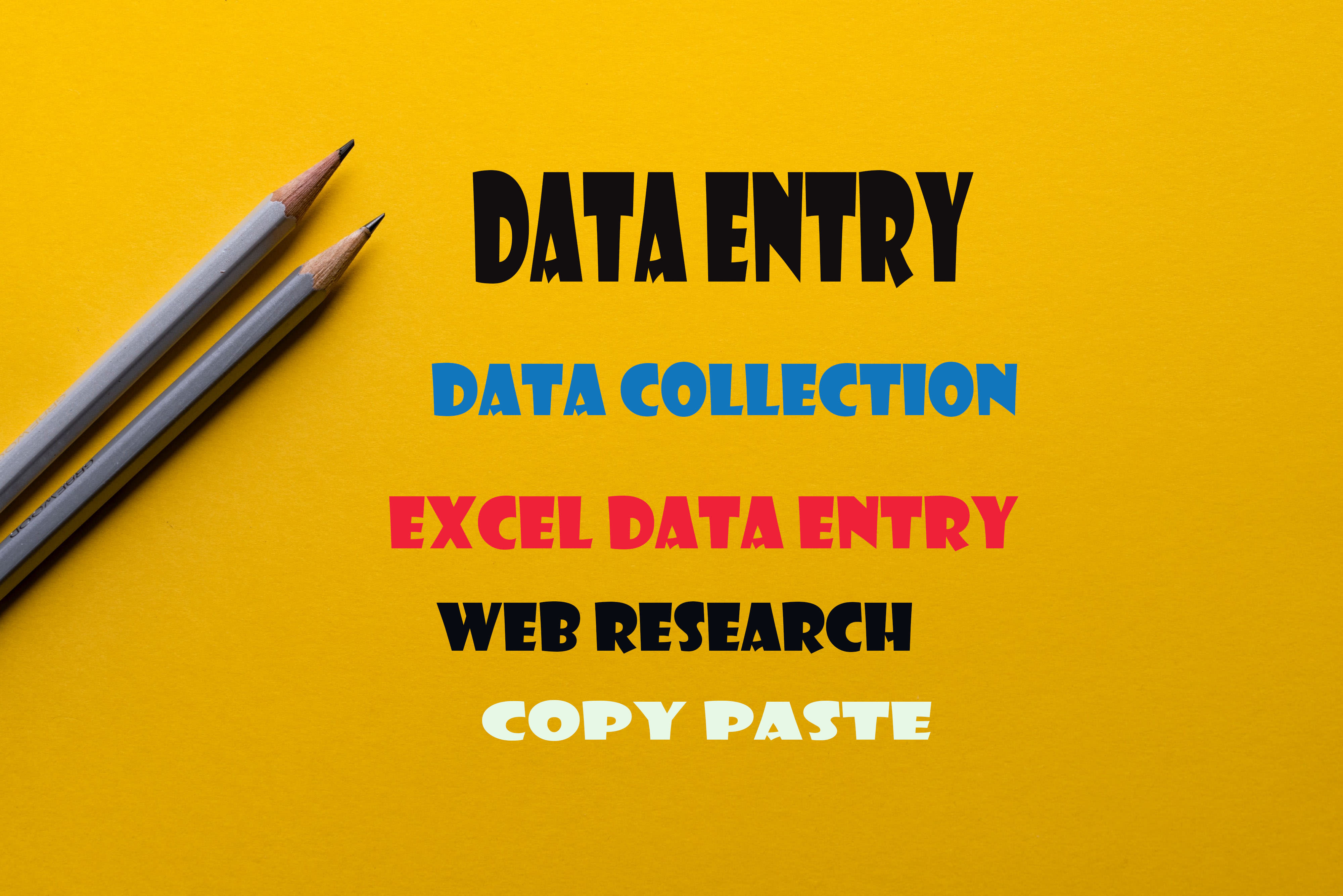 data entry data collection excel data entry