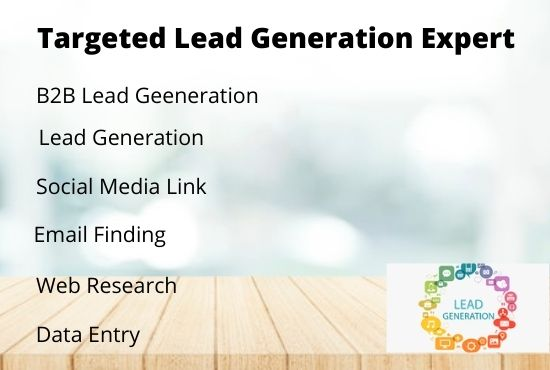 I will do b2b lead generation,  web research and tergated lead generation