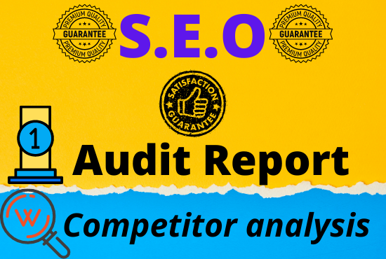 I will offer a professional SEO audit report and competitor website analysis