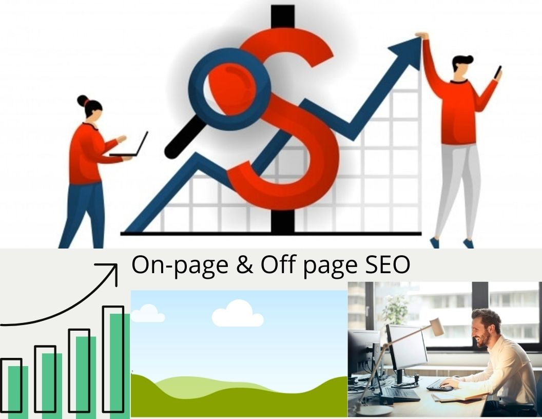 I am provide you Best monthly seo service for your website