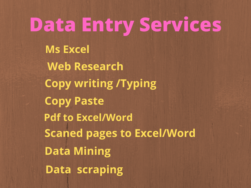 I will do Data Entry, Copy Paste, Web Research and Excel Data sheet