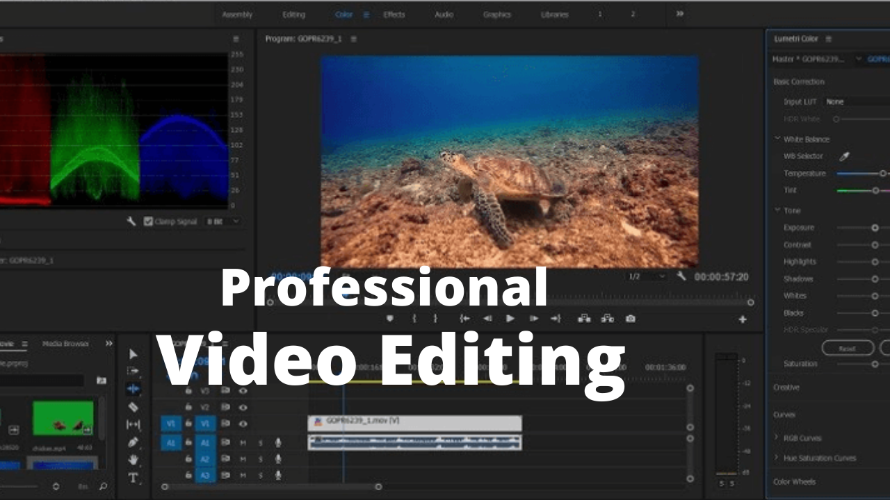 I will do professional video editing 12 hours