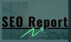 I will provide expert SEO report with competitor website analysis