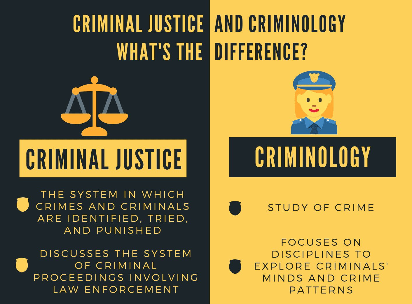 I will write on criminology criminal justice and criminal law
