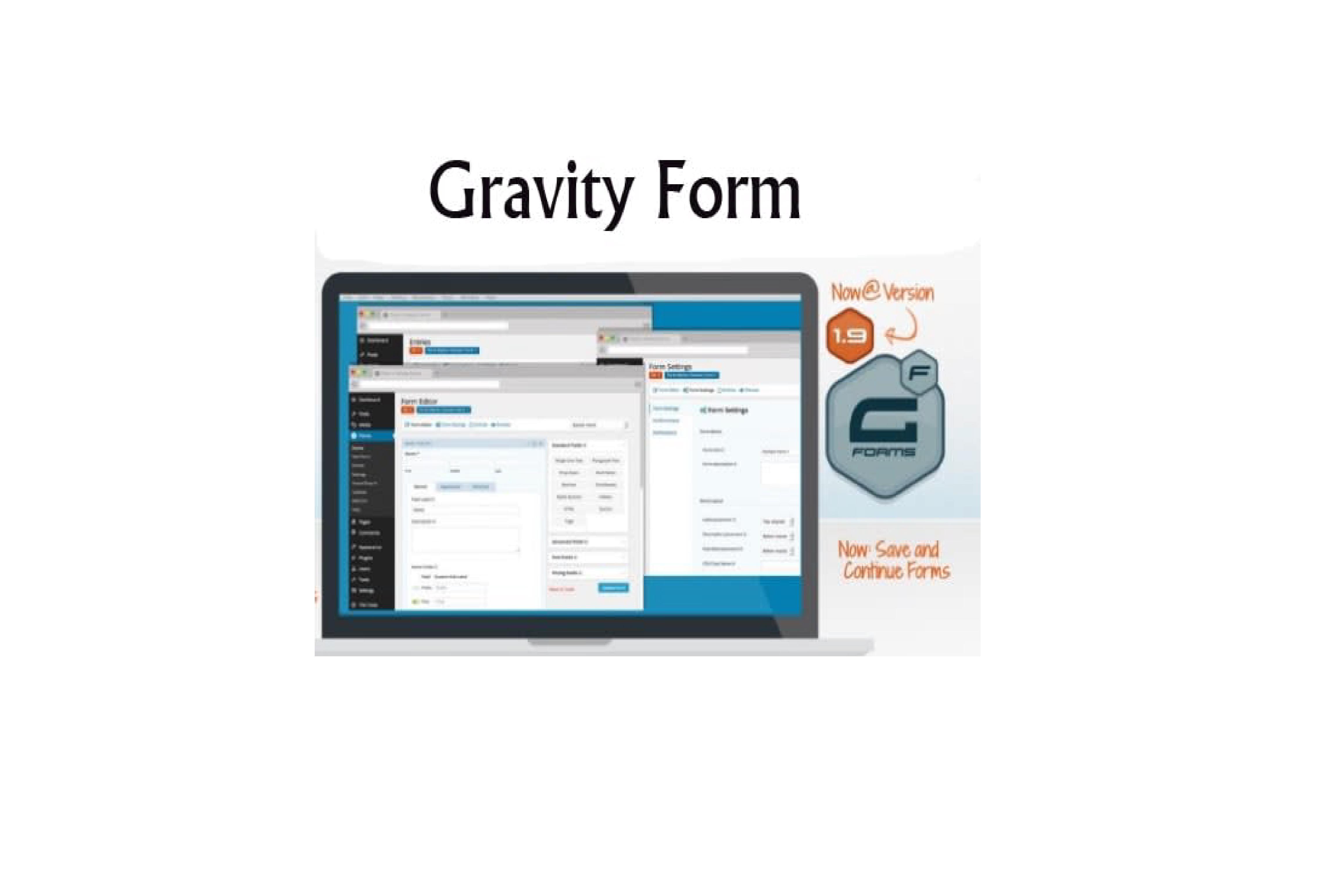 I will design or custom gravity form, contact 7, last, wp, ninja form