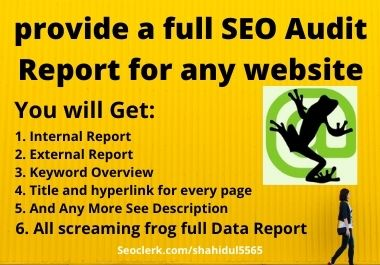 I will provide a full SEO Audit Report for any website