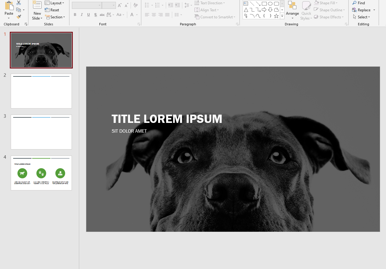 I will design a premium business powerpoint presentation