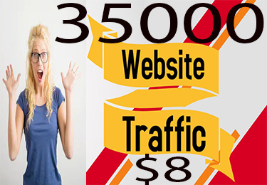 I will drive safe and Real traffic to your website.