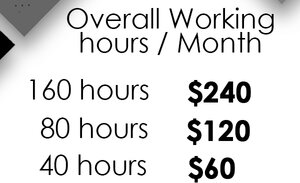 1.5/hr Professional Virtual Assistant VA Services