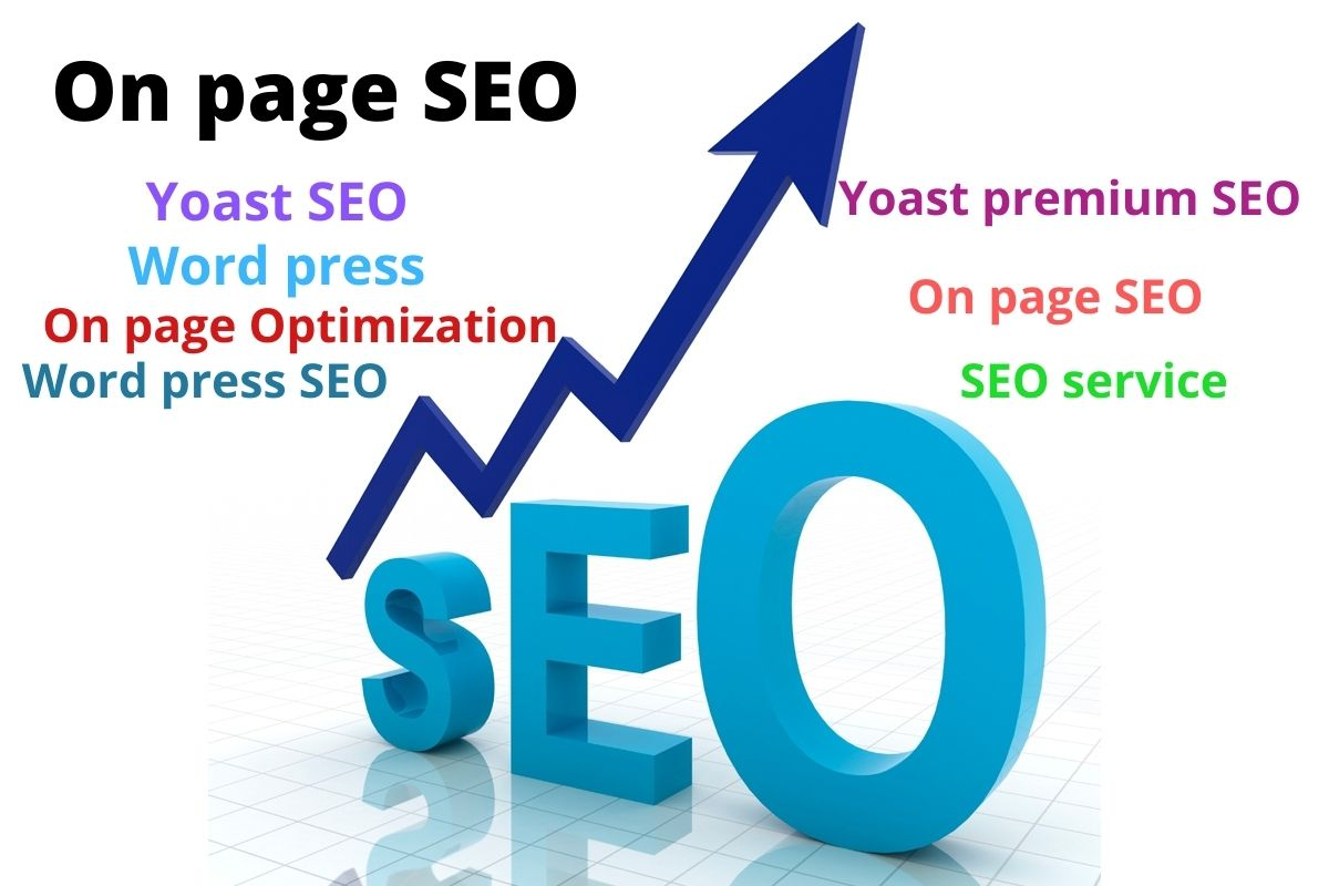 I can do good quality on page SEO expert