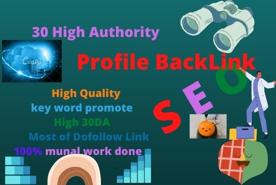 40 high quality profile backlinks service.