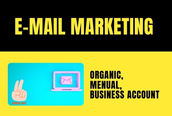 I will Find 500 profesional and business E-mail account for your business