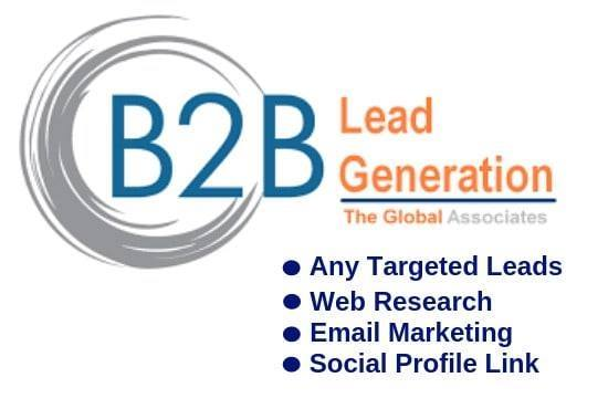 i will do web research,  b2b lead generation and data entry within 24 hours