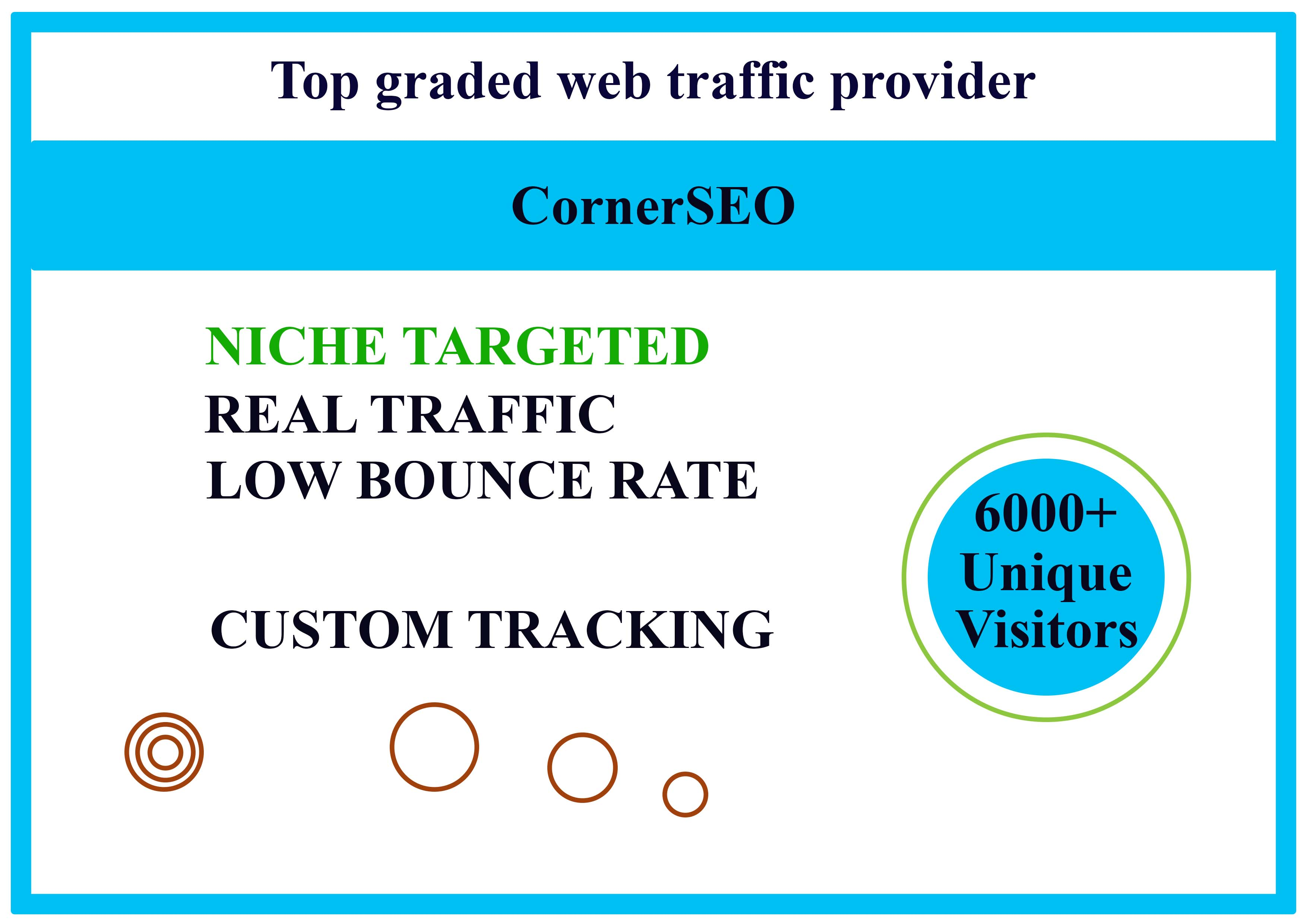 I will bring real visitors,  targeted web traffic and secure service