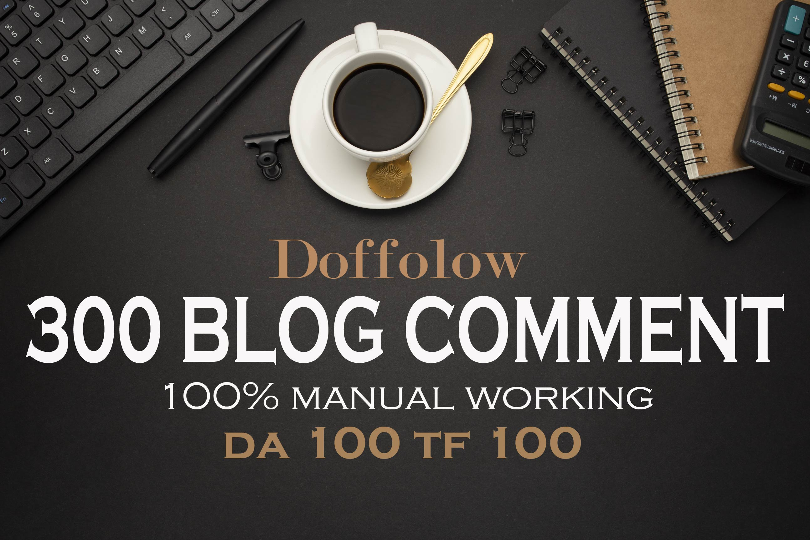 I will make 300 high quality backlinks using blog comments