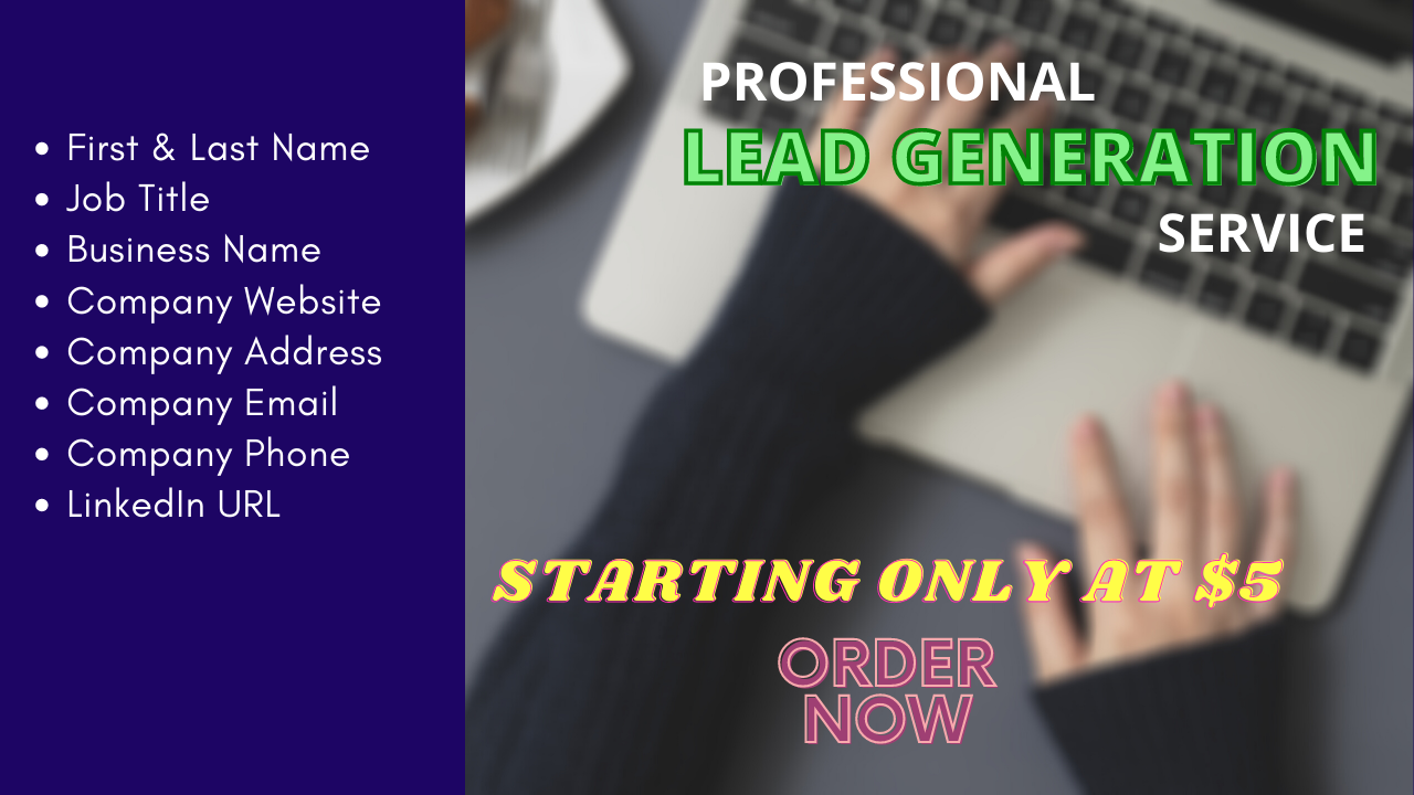 I will do b2b lead generation and build targeted contacts list