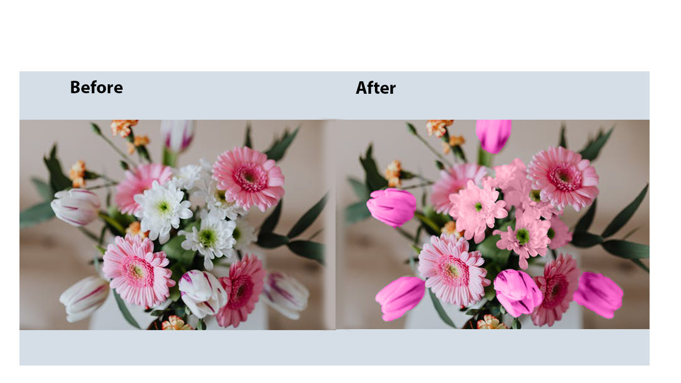 Background remove and image retouching