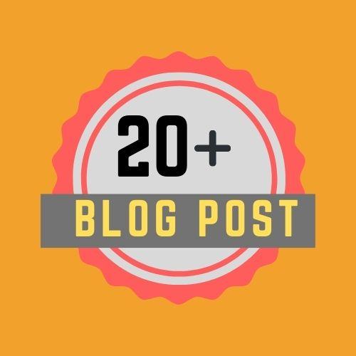 20+ Blog post High Quality PBN Backlinks for your Websites