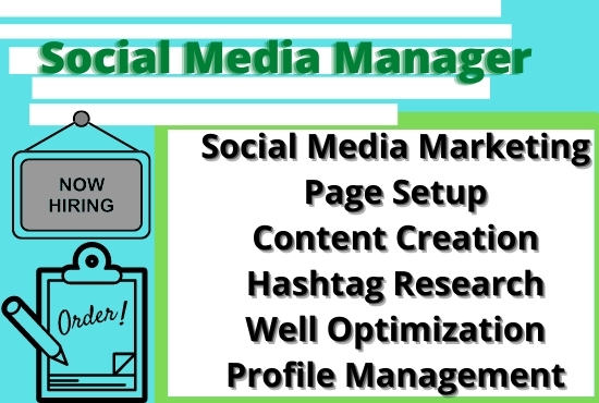 i will do social media marketing manager and virtual assistant for you