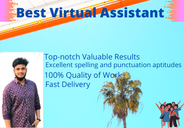 I will be your virtual assistant for data entry work and web research