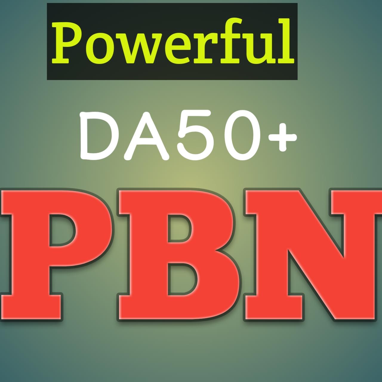 Build powerful 240 Homepage PBN Back links High Quality DA 70 to 35+