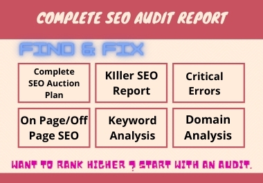 I will do professional seo audit report for your website
