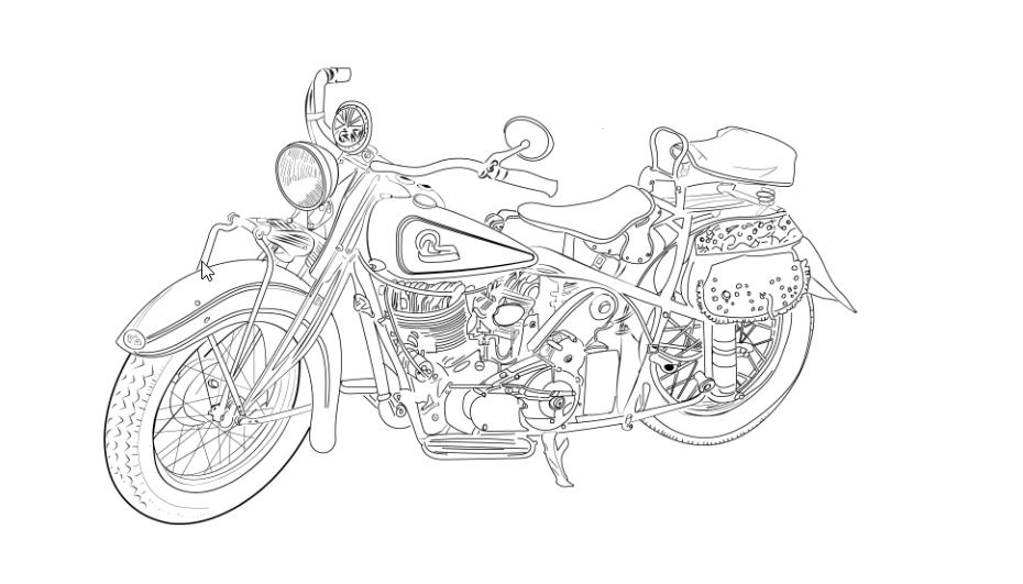I will draw detail line art illustration vector