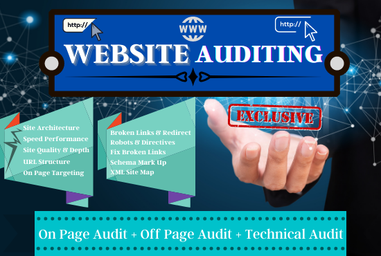 I will provide a professional Website SEO audit report