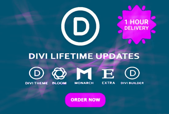l install divi theme and plugins with lifetime updates