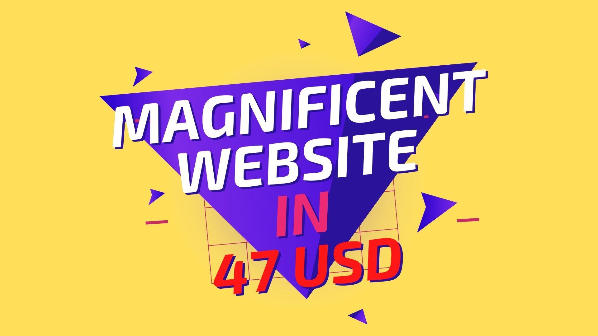 i will create a Magnificent WordPress Website
